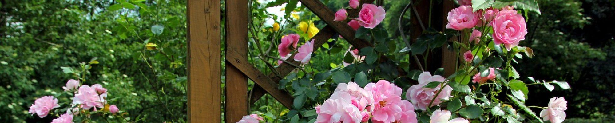 Comment Aménager Son Jardin En Pente conseils et recommandations pour l'aménagement d'un jardin